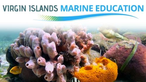 vingn-marine-education