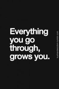 everythingyougothroug