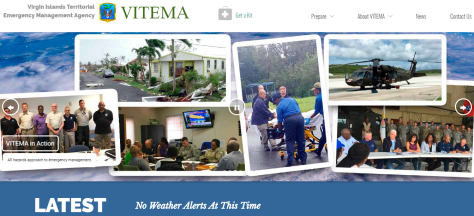 new vitema website screenshot